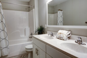 Remodeling the Bathroom in Your Anne Arundel County Home